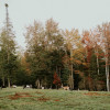 La lu farm goat camping site