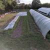 Secluded Urban Farm