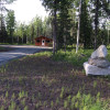 Kenai Area Fish Camp
