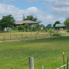 Red Lilly Orchard - a bucolic farm