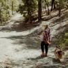 Spruce Mt. AZ, Lynx Creek Gold