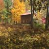 Beautiful Wilderness Cabin