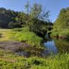 Coriander Creek - Riverside