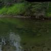 River Meadow Farm Camp