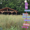 Off Grid Medicinal Herb Farm