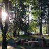 Terri's Tipi Park - tent site