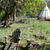 Shady camping along Love Gulch