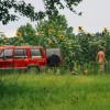 Sam Sprouts Farm