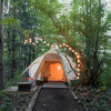 Heated Yurt in the Forest (dogs ok)