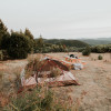 Yosemite Garden Camp Tent Site 1