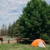 Barton Family Farm and Ranch