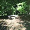 Campsite along Sterling Creek