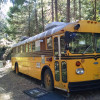 Yellow School Bus Camper in Forest