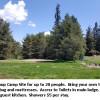 Group Camp Site - Tamarack Pop. 9