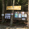 Acadia East Campground The Beehive