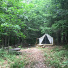 Foxtail Farmstay: Woods Glamp Site