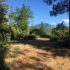 Shasta Lake 22-acre OffGrid Camping