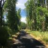 Hideaway in the Wetlands