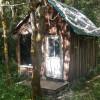Rustic Redwood Cabin-ApplegateHaven
