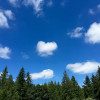 Rancho Laguna @Snoqualmie Falls RV