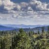 Mountaintop Paradise