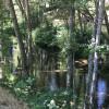 Mandala Wellness Retreat Camping