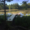 Pitcher Pond campsite