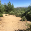 Zen Mountaintop Retreat: SkyPark