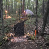 All Rustic Forest Camping!