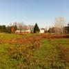 Farm, Field, & Forest near Syracuse