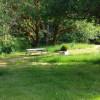 Powder Creek Ranch Campsite #4