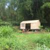 Organic permaculture farm