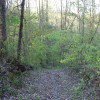Hidden Hilltop Hideaway