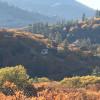 Buddha Garden Farm Camping & RV