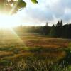 Camp Cascadia @ North River Reserve