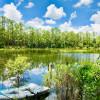 Magical lakefront fairytale getaway