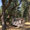 Cosumnes River Cabin Camp