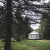 Yurt in the Pines
