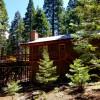 Big Trees Deck High Sierra Getaway!