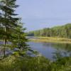 Maine WildWalkWaysTWO