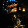 The Magical Treehouse