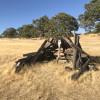 Oak Woodland Tent Camping