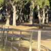 Buffalo Creek Campsites@Newell