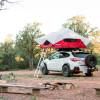Treehouse Camp: Forest/Desert
