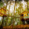 Enchanted Magical TREEHOUSE!