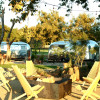Vintage Airstreams on Wine Trail