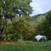 Savage Acres: Camp on Craig Creek