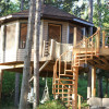My Lake Home Tree House