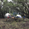 Secluded Lago Vista Tent Camping