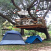Texas Treehouse Swings Camp - Tents